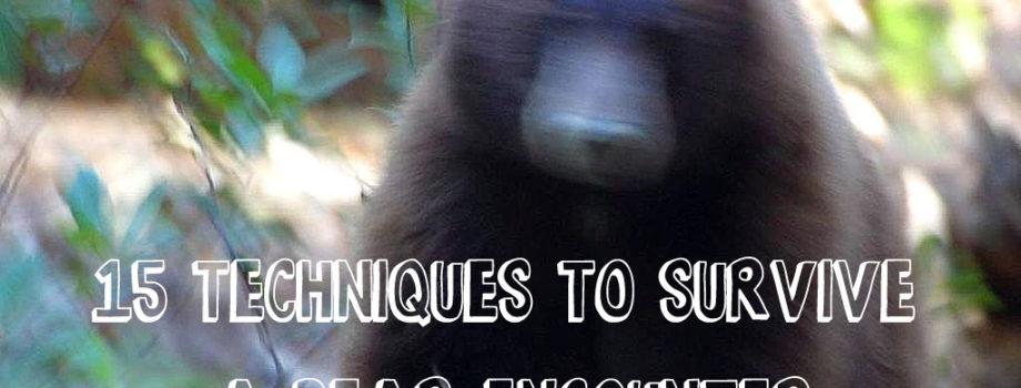 15 techniques to survive a bear encounter