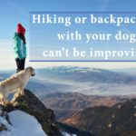 Hiking or backpacking with your dog cannot be improvised