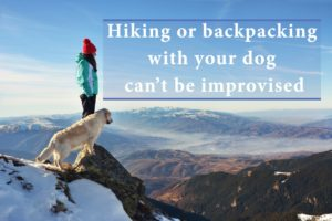 Hiking or backpacking with your dog can't be improvised! Essential guide