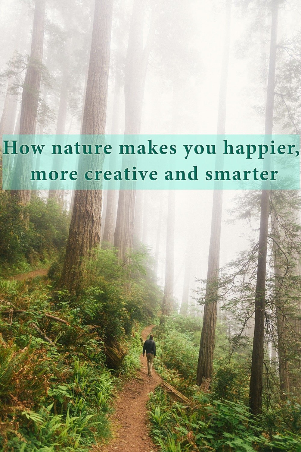 How nature makes you happier
