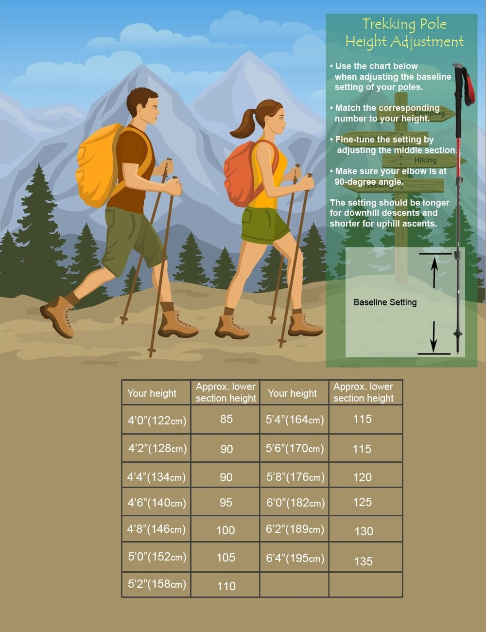How to Adjust Hiking Poles forecasting