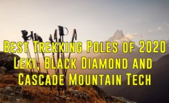 Best Trekking Poles of 2020 – Leki, Black Diamond & Cascade Mountain Tech