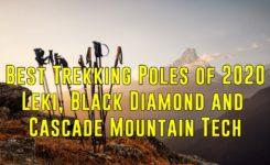 Best Trekking Poles of 2020 – Leki, Black Diamond & Cascade Mountain Tech