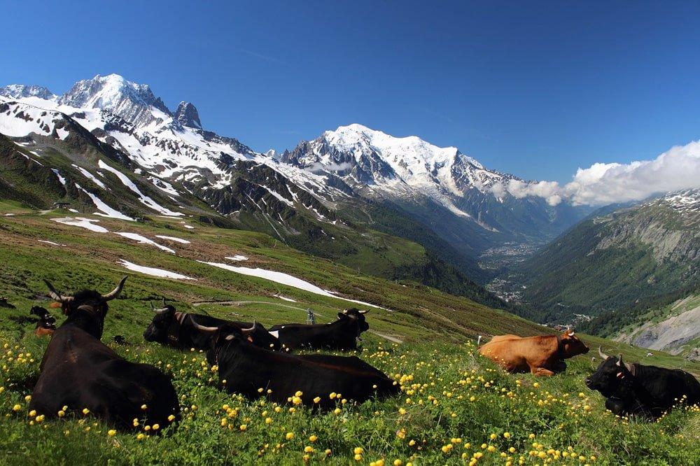 Tour of Mont-Blanc