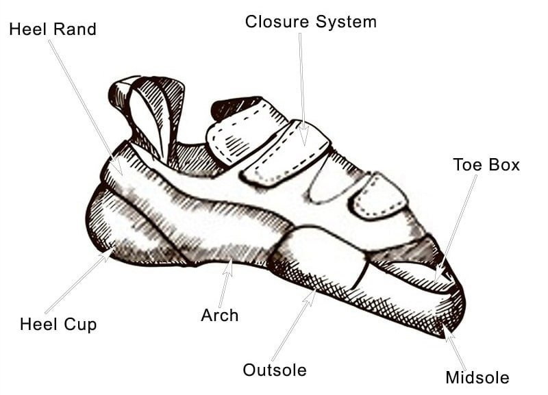 Anatomy of climbing shoes