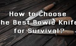 How to Choose the Best Bowie Knife for Survival?