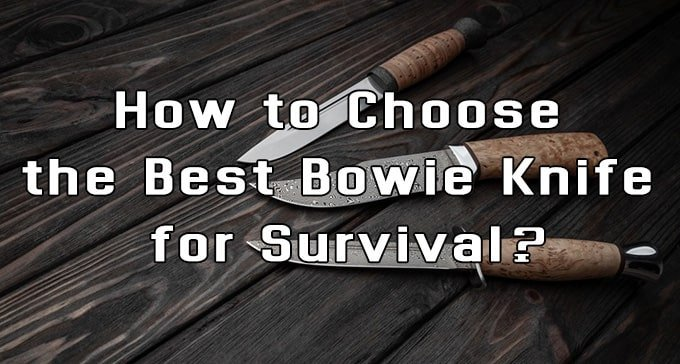 How to Choose the Best Bowie Knife for Survival