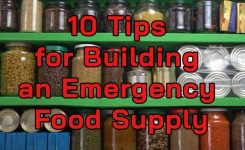 10 Tips for Building Your Emergency Food Supply – How to Stock Up Food Efficiently
